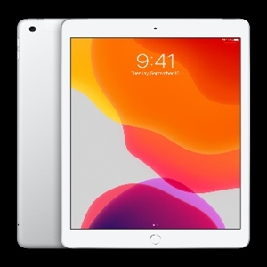 Tableta Apple iPad (7th Generation) 25.9cm (10.2) 128GB Almacenamiento iPad OS 4G Plata